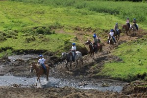 Horse riding in Dominical