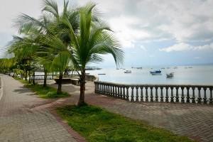 Puerto Jiménez rustic charm