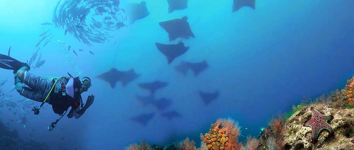 Bat Islands, Guanacaste
