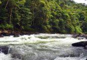 Cucaracho River, Costa Rica
