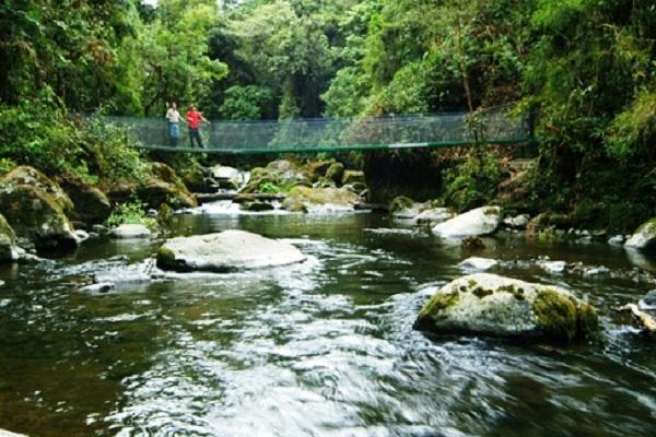 Savegre-River