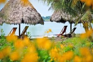 Iguana Lodge Puerto Jimenez