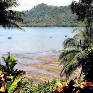 La Parcela, Dominical