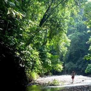 Walking up the Rio Tigre on the Osa Peninsula