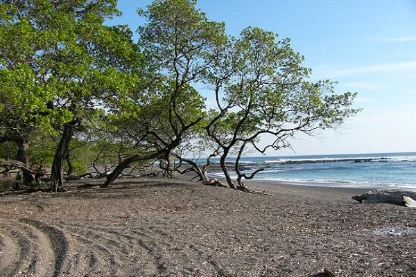 Playa Marbella Beach Costa Rica